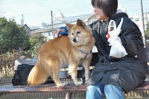 110205_chobi_003.jpg