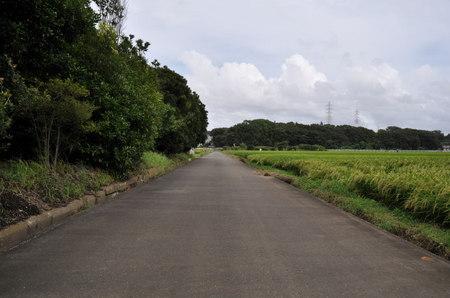 2011.09.04_003.jpg