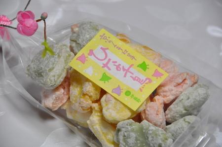 2012.02.04_enoshima_005.jpg