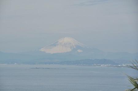 2014.01.01_enoshima_004.jpg