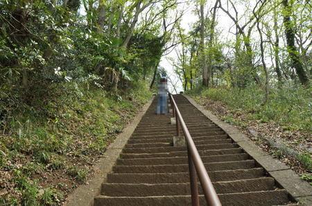 2014.04.09_sakura_009.jpg