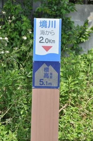2014.05.10_enoshima_013.jpg