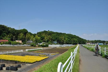 2014.05.24_jitaku_enoshima_023.JPG