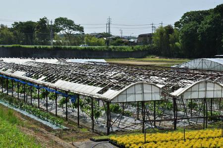 2014.05.24_jitaku_enoshima_025.JPG