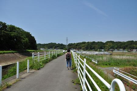 2014.05.24_jitaku_enoshima_041.JPG