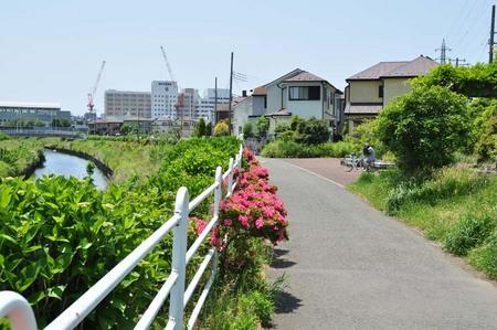 2014.05.24_jitaku_enoshima_054.JPG